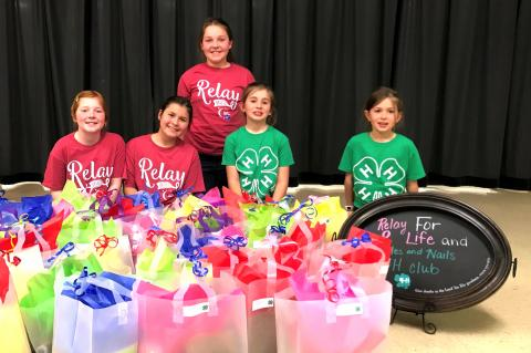 Needles and Nails 4-H Club members who recently worked on the Chemo Care package service project include (McKenzie Bruning, (front) Karissa Bruning, Maddie Steffen, Breah Steffen and Kynlee Steffen.