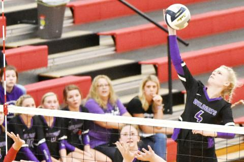 Belle Harms led the team in kills, with 15 against Howells-Dodge in the final match of the tournament